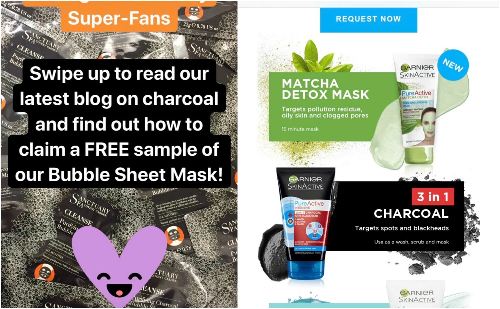 Free Sanctuary and Garnier Masks