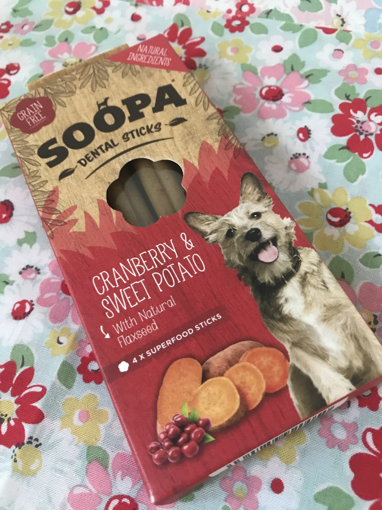 free dog treats